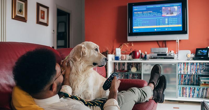テレビ画面で動画サービスを視聴する人のリアル①~生活者と「映像コンテンツ」の